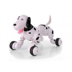 Роботы для детей